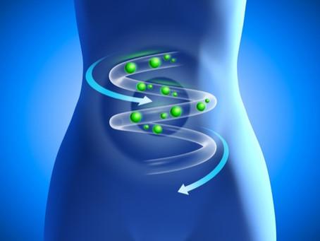 Manquez-vous de probiotiques ? Voici quelques pistes pour le savoir.