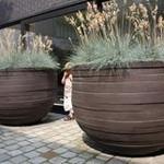 Entree winkelpand, van der rhee, outdoor design, tuinontwerp