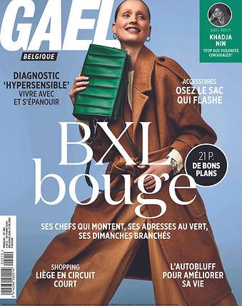 2010-01 Gael_Carnet de Belgitude-1.jpg
