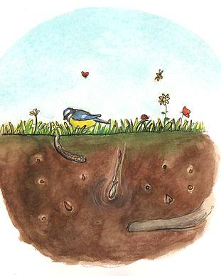 faire-part naissance Roseline d'Oreye graine qui pousse fleur oiseau papillon