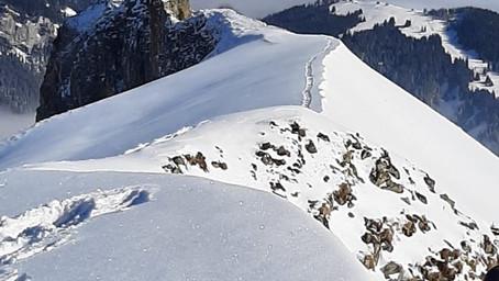 Schimbrig im Schnee (LU)