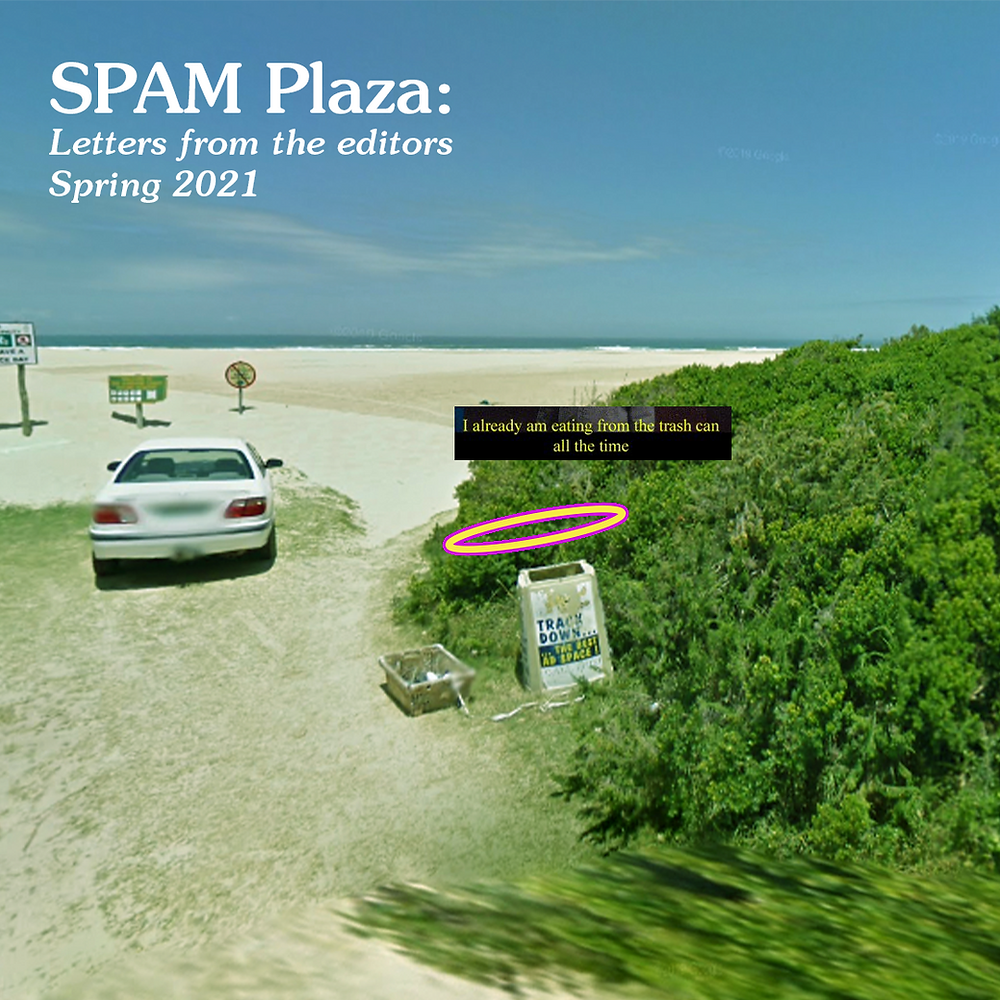 A google earth screencap featuring a bin with a halo, a pixelated beach, a white car and text that says SPAM Plaza: letters from the editors spring 2021 and also 'I already am eating from the trash can all the time'