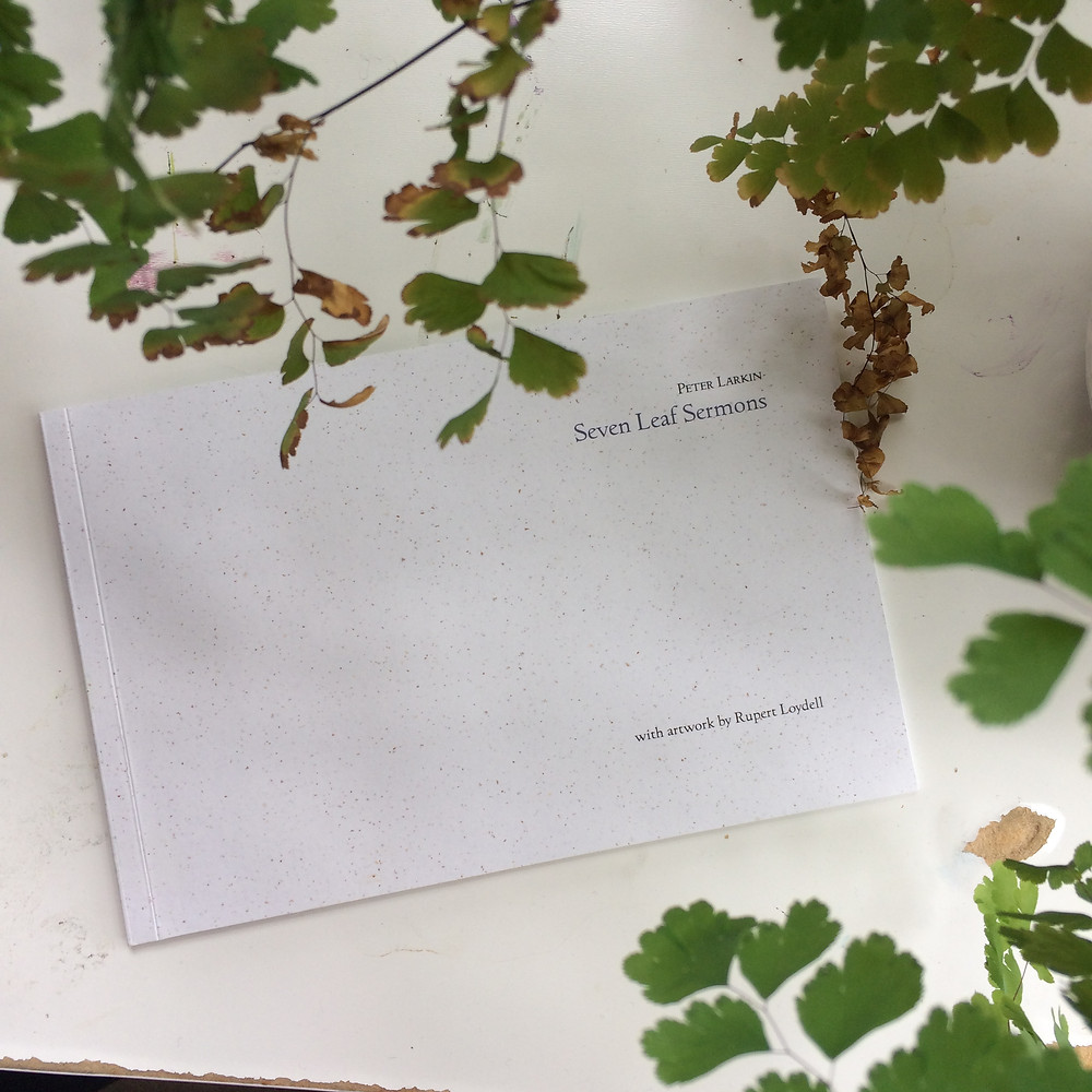 Cover of Seven Leaf Sermons under some maidenhair fern