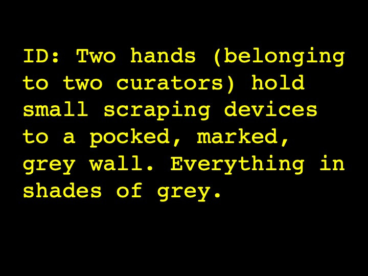 Image Description: Two hands (belonging to two curators) hold small scraping devices to a pocked, marked, grey wall. Everything in shades of grey