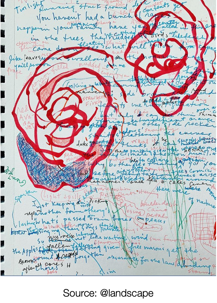 A white sketchbook page with blue, black and pink handwriting, with big red roses sketched upon it.