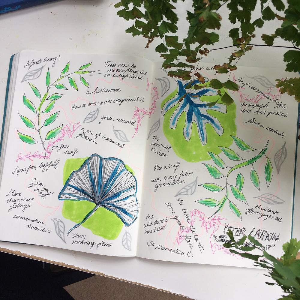 botanical illustrations and quotes from Larkin's book in a notebook