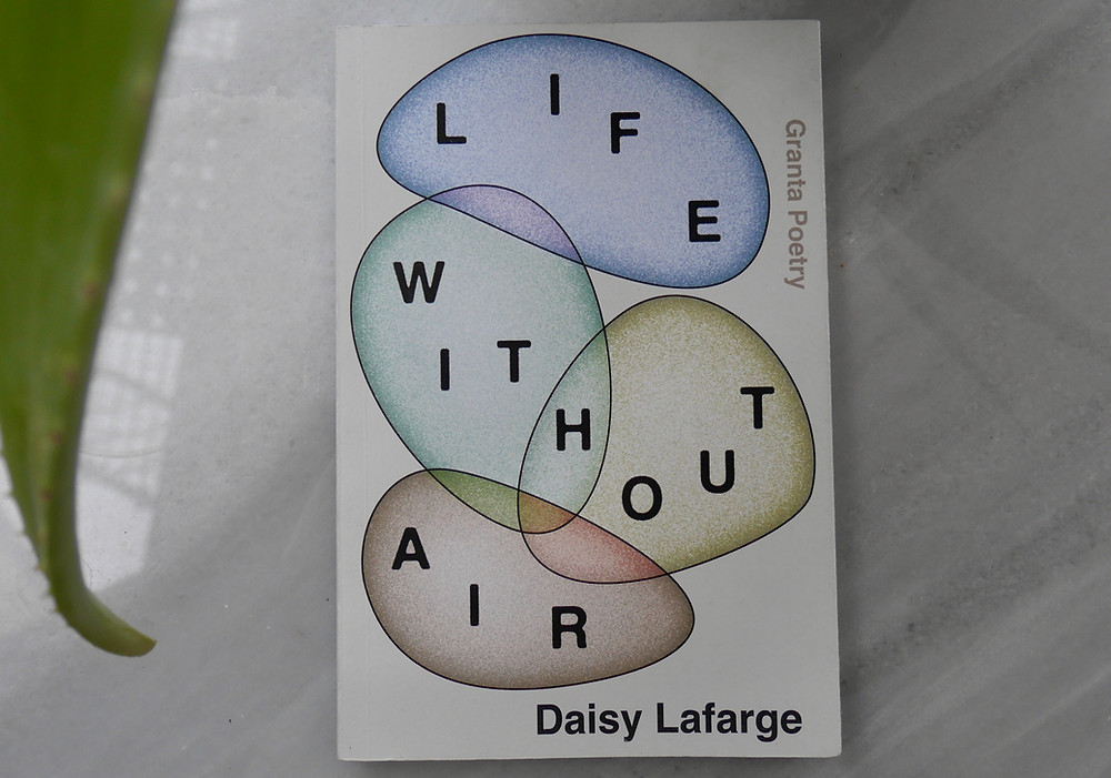 Life Without Air book (which features four interlocking coloured bubbles) lies on a pale background with big aloe leaf on the foreground casting geometric flashes of light
