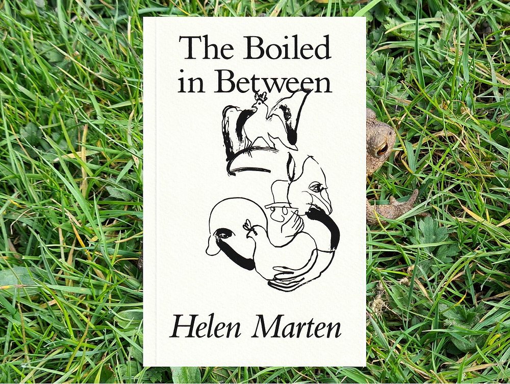 Front cover of The Boiled in Between by Helen Marten photoshopped onto a close up picture of green grass. The book has a white backgound with black lettering and ab astrct black line drawing of a cockeral and a man holding a chicken underneath.