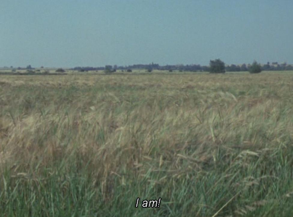landscape grass with caption 'I am!'