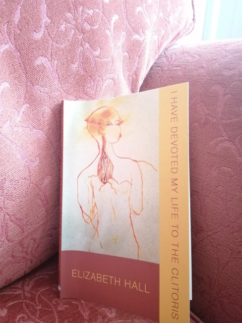 Photo of a copy of I Have Devoted My Life To The Clitorus by Elizabeth Hall, resting on a dark pink floral chair. On the cover there is a drawing outline of a naked figure bordered by dark pink and yellow.