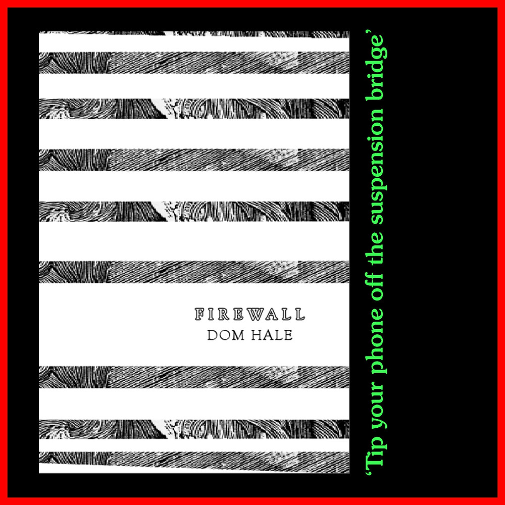 A black and white striped book cover on a black background with the quote in green text 'Tip your phone off the suspension bridge'