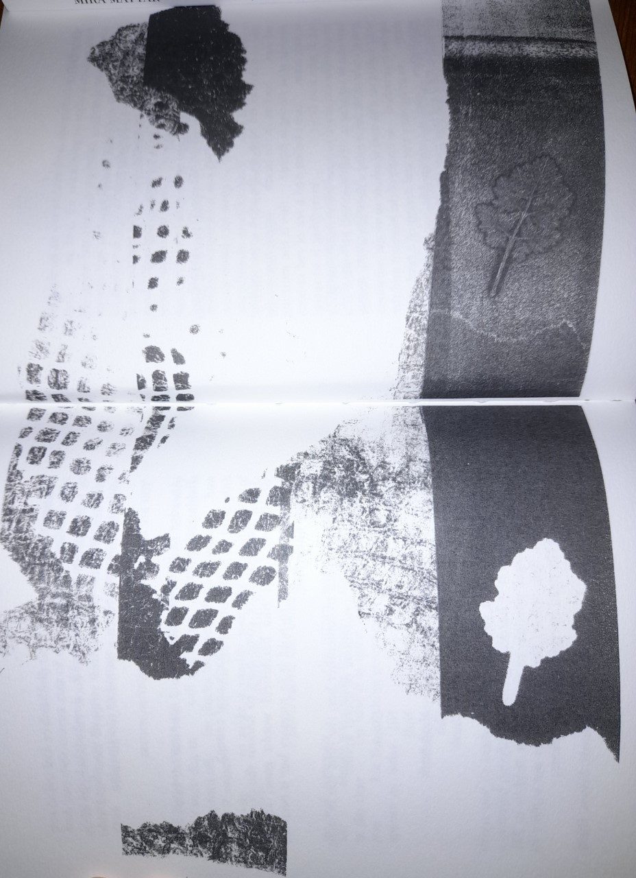 Another black and white monograph illustration from the publication. Several images appeared to be overlaid. Two pressed leafs can be seen on the right side of the picture.