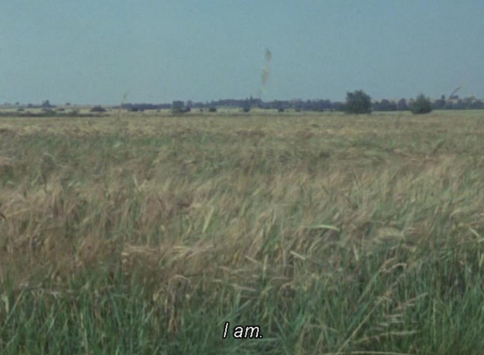 landscape grass with caption 'I am'