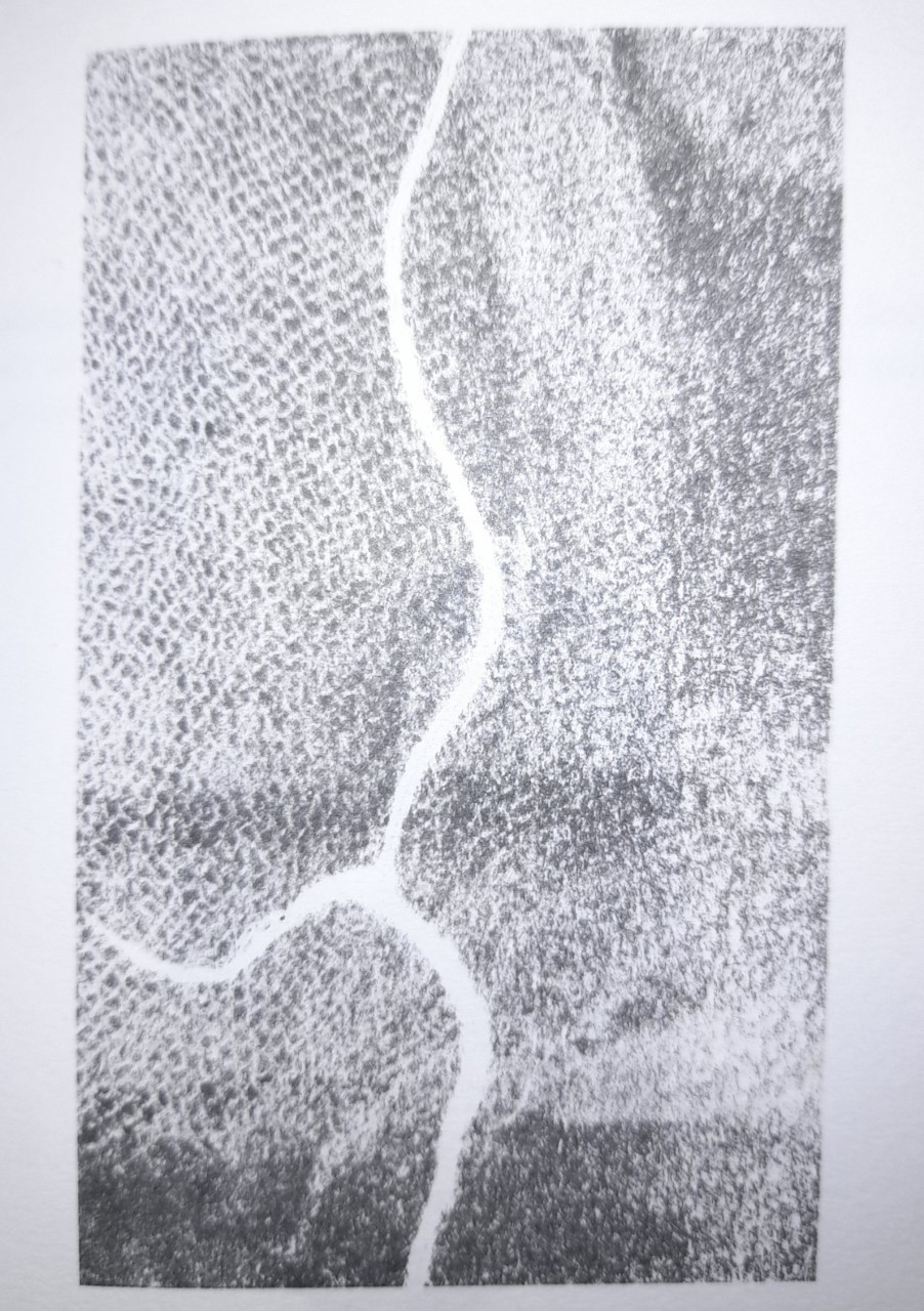 Black and white abstract monograph illustration from the work: wavy link cuts through the middle of glitchy ink effect. The background could resemble a fingerprint, or the patterns of worked fields.