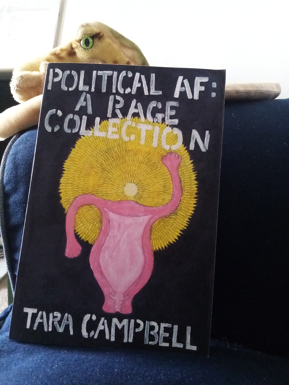 book cover for Tara Campbell pink figure against sun-like corolla