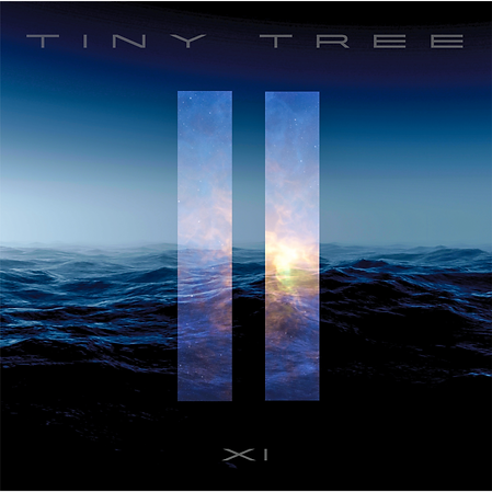 Tiny Tree XI Album Cover Image.PNG