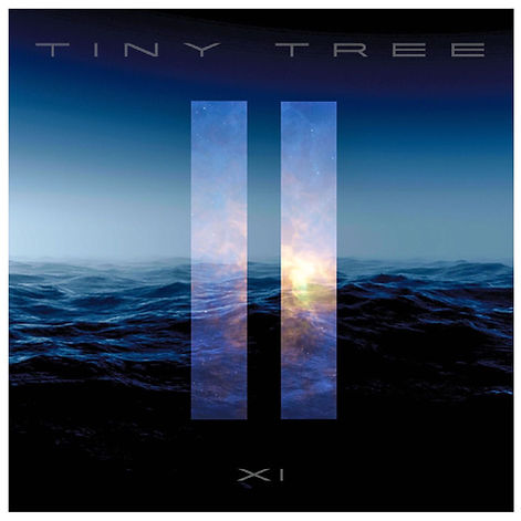 Tiny Tree - XI Album Cover Front.JPG