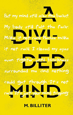 A DIVIDED MIND_for jpegs_front cover.jpg
