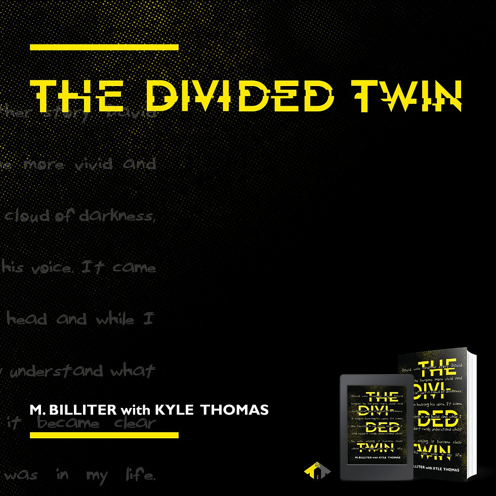 the divided twin_graphic_IG_3 (3) - Copy