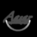 identidadevisual_aasar_logo.png