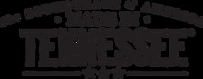 TDTD Logo.png