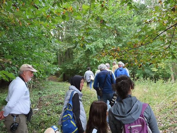 birding Clarks Pond field trip.jpg