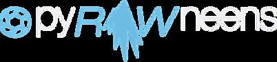 Logo-final-ai-blanc_edited_edited.png