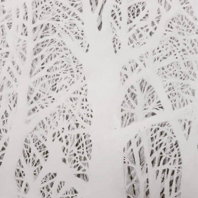 Tree Drawing (section). graphite pencil