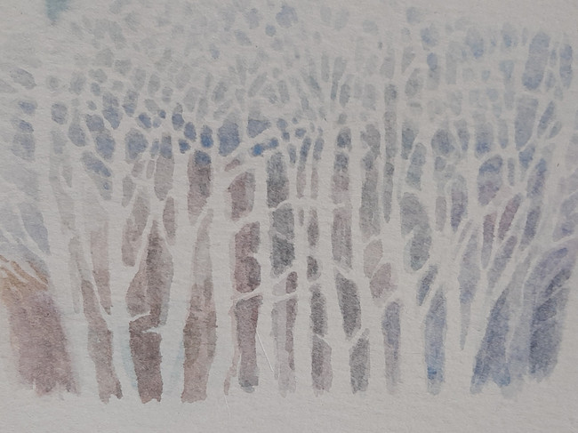 Tree Form 4. 15 x 20cm, watercolour