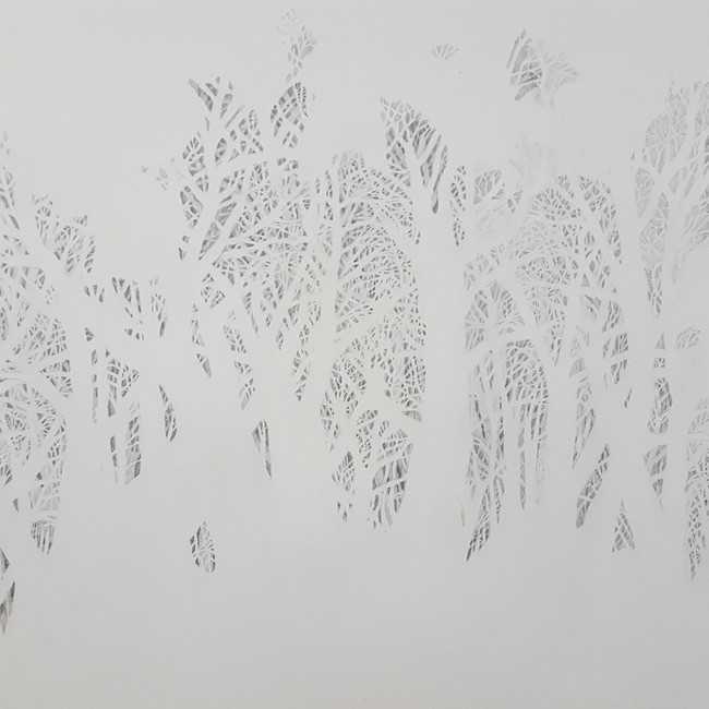 Tree Drawing. 84 x 114cm, graphite on paper.