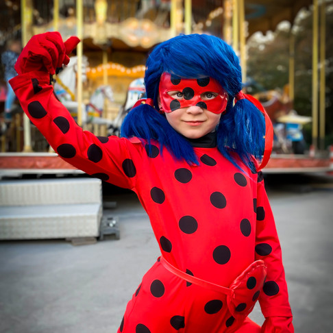 Ladybug in Paris, France