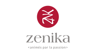 Zenika - NG Finance assisted the company Zenika in Financial Instruments Valuation
