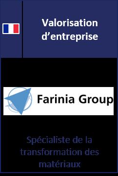 20_01_Farinia_FR_company_valuation.png