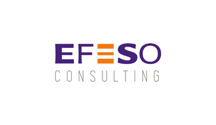 EFESO Consulting - NG Finance assisted the company EFESO Consulting in Financial Instruments Valuati