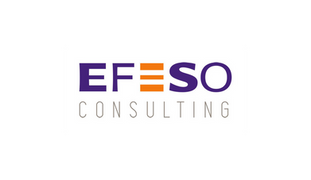 EFESO Consulting - NG Finance a accompagné la société EFESO Consulting dans sa valorisation d'in