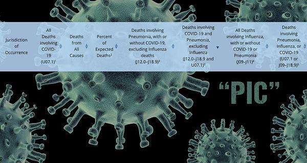 coreys digs covid part 2 PIC.jpg