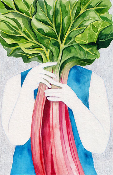Food_Illustration_Rhubarb_Editorial_Kim_