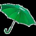 Зеленый зонт.png