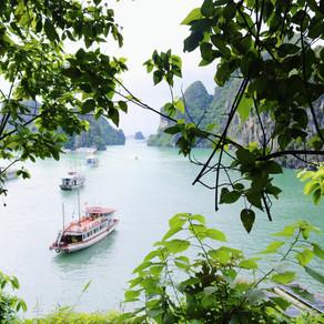 Vietnam & Hong Kong Tour Guide- PART 1