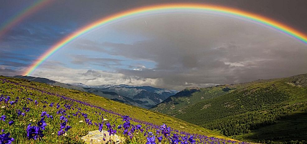 Rainbow 2.PNG