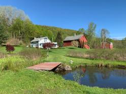 Wicked Finch Farm Bridge