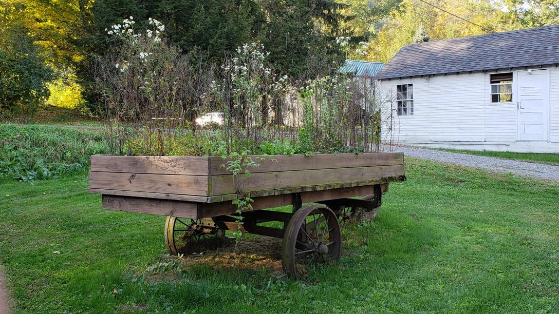 wagon flowers.jpg