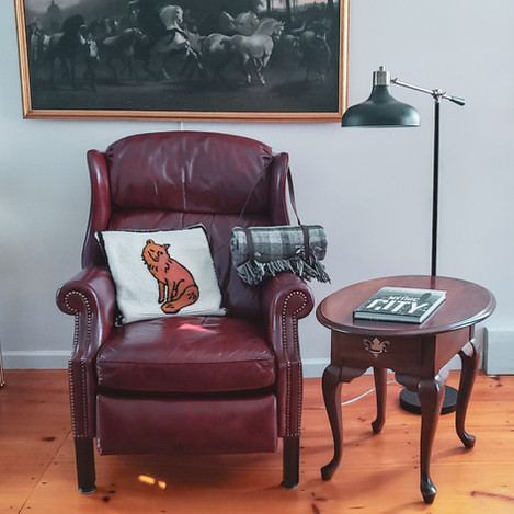 Cozy Leather Chair