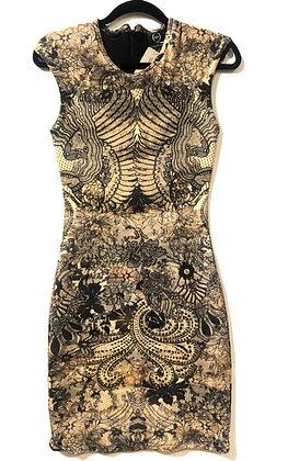 Alexander McQueen Lace Printed Dress