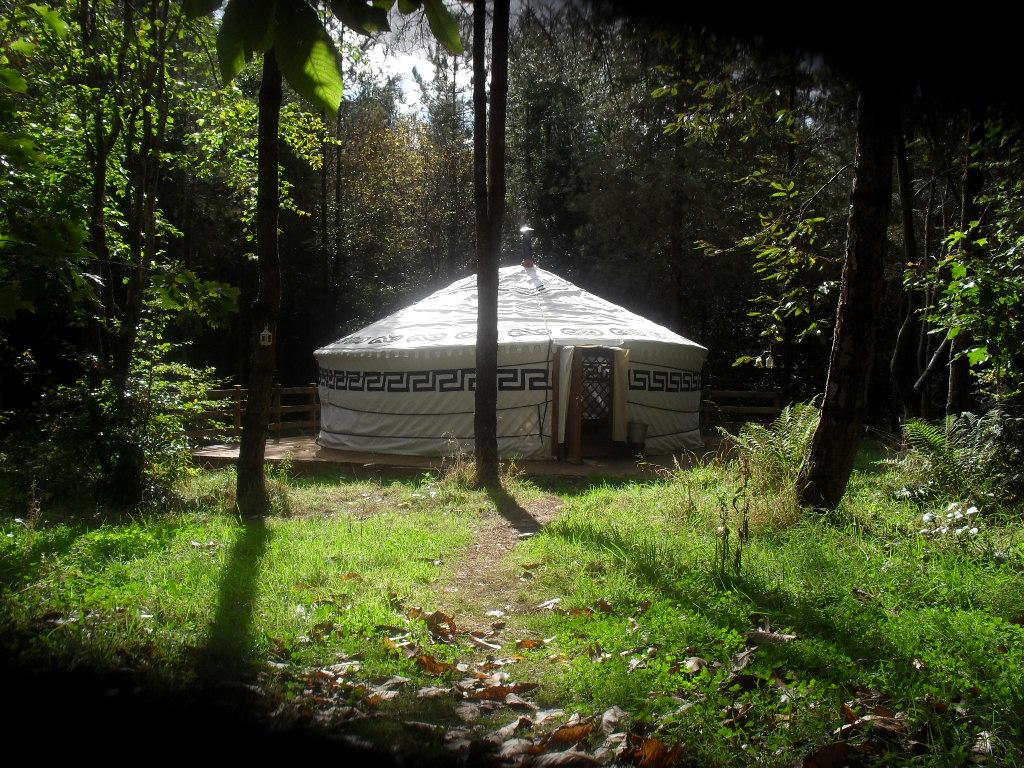 יורט - אוהל מונגולי