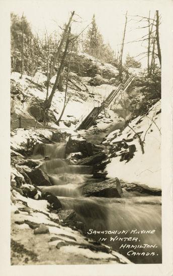 hamiltonwaterfalls1.jpg