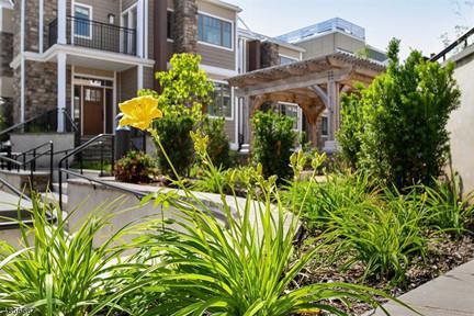 Franklin place flowers.jpg