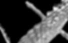 Schermata 2020-01-03 alle 16.41.49.png