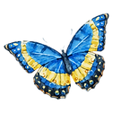 Aquarelle Papillon 10