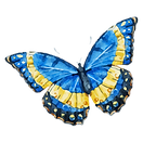 Aquarell-Schmetterling 10